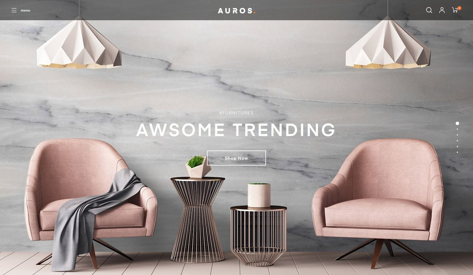 Auros WordPress Theme for online store