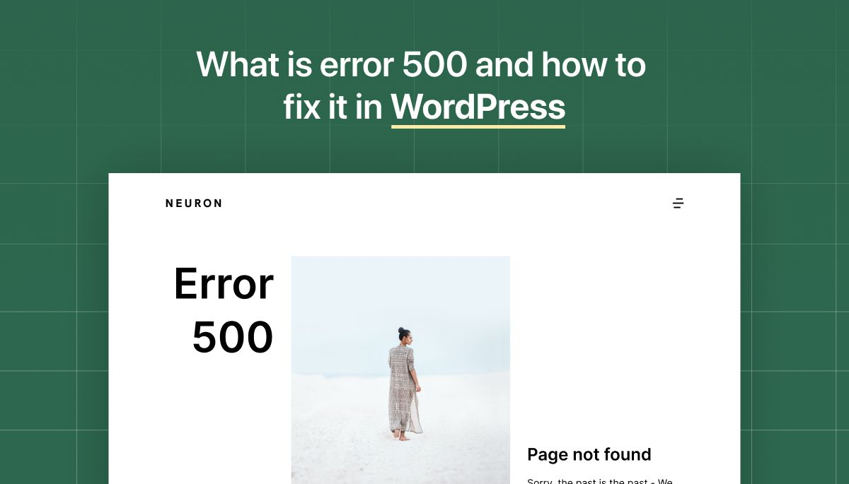 What is Error 500 and how to fix it