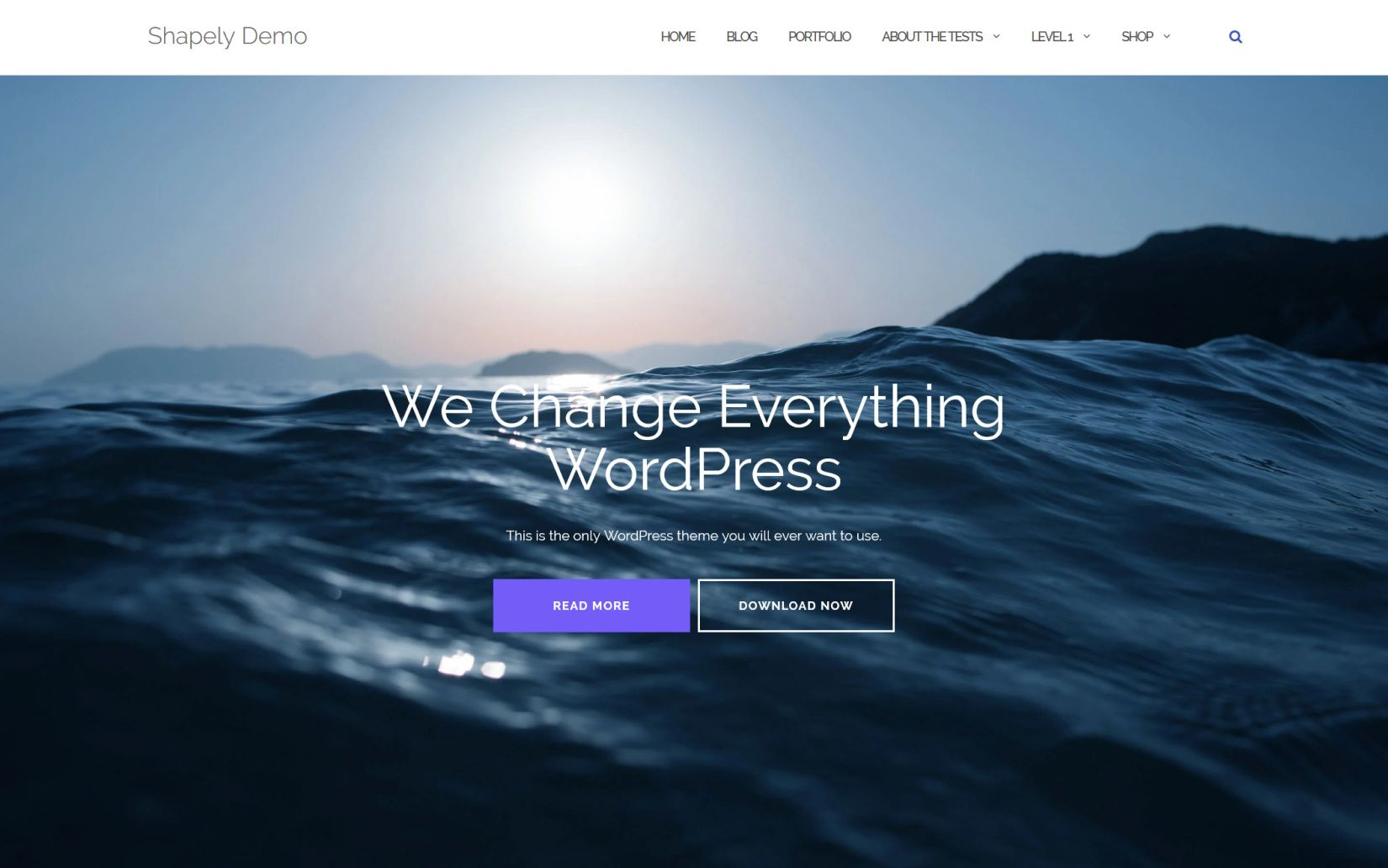 Best Free themes fort WordPress Shapely Theme