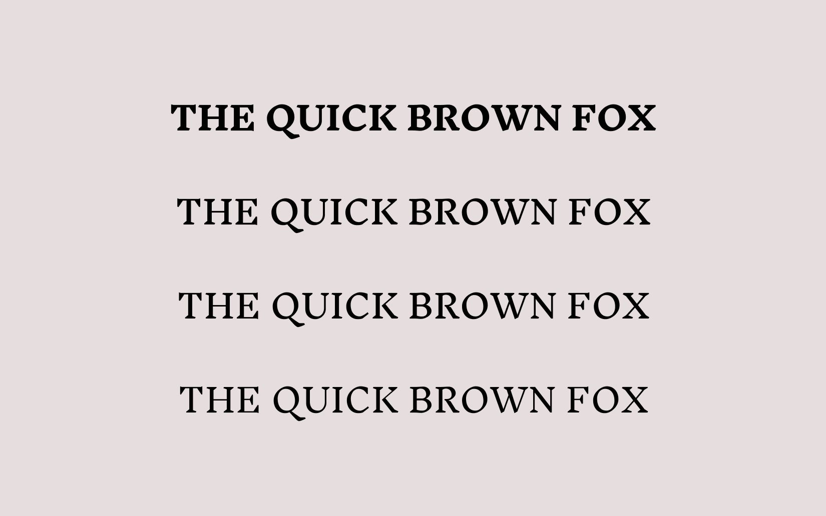 Best Free and Rare Serif Fonts