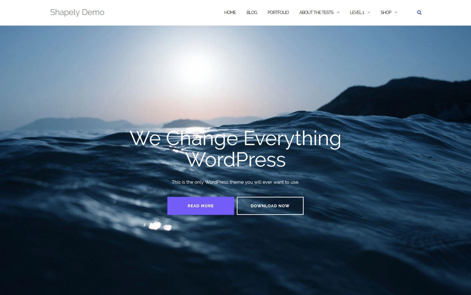 Shapely One Page WordPress Theme