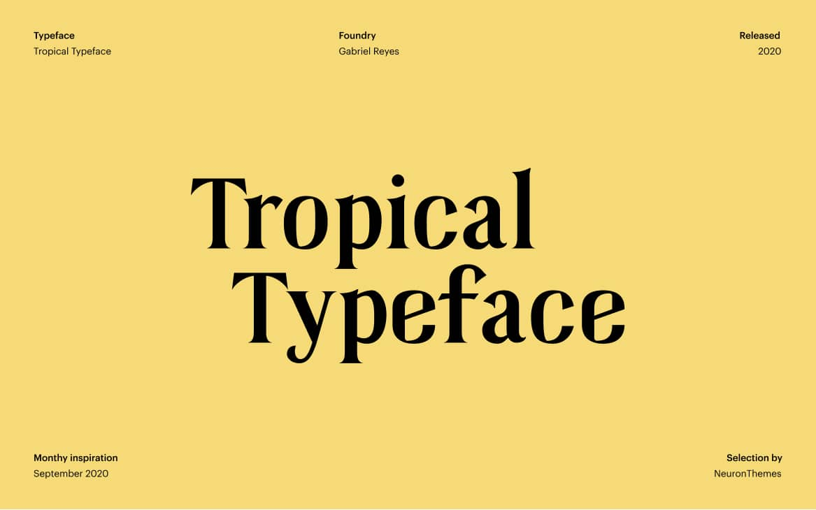 Best Free Display Fonts Tropikal Display Serif Typeface