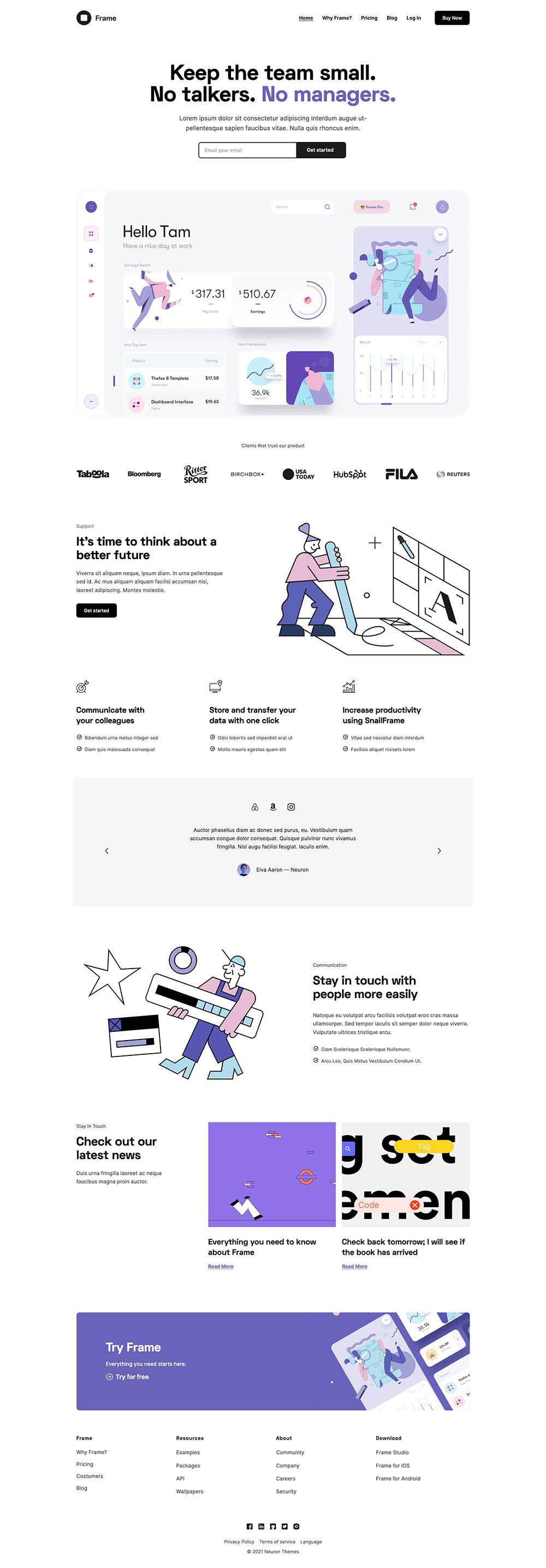 Frame Software as Services Demo Website for WordPress