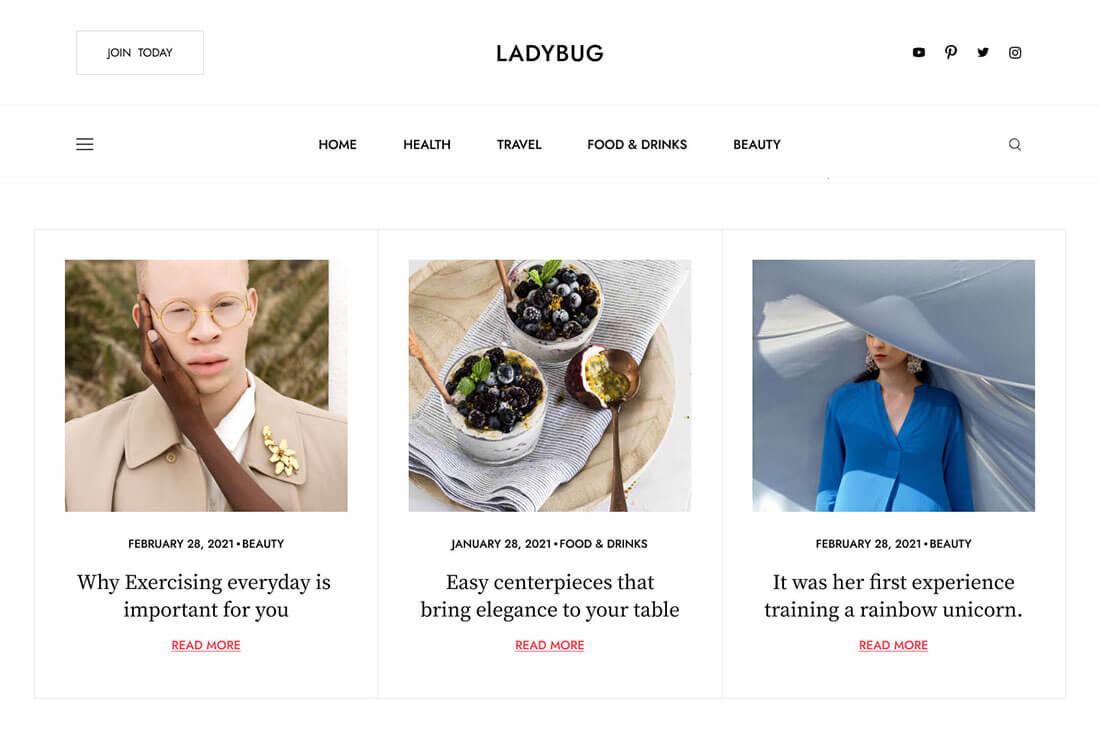theme kaon preview Ladybug